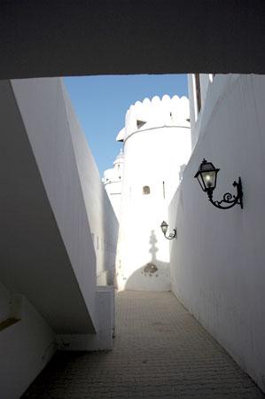 Al-Hosn Fort