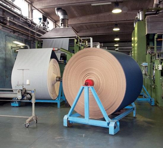 Textile, shoe, plastic, auto, and electronics enterprises utilize imported raw materials.