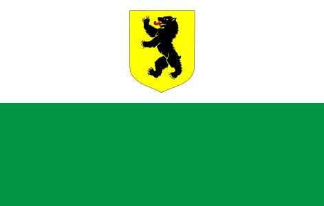Pärnu County Flag