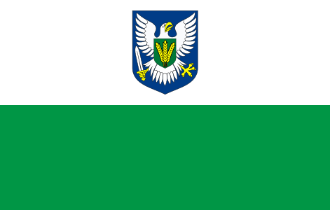 Viljandi County Flag