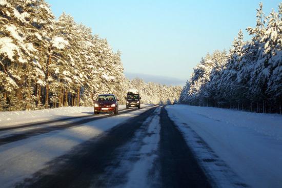 Snowy Road In Lahemaa