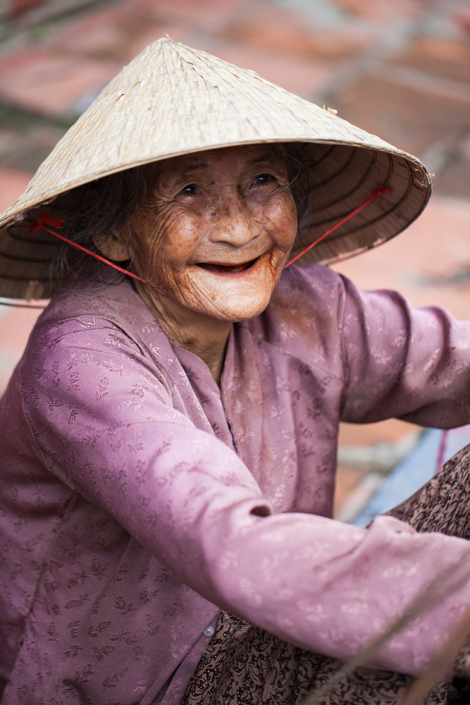 Seniors, age 65 and older, account for Vietnam's smallest age group.