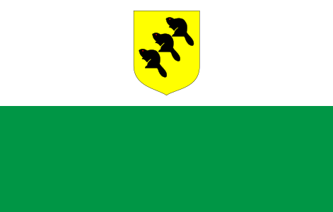 Põlva County Flag