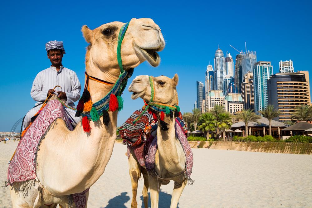 The United Arab Emirates has a subtropical desert climate.
