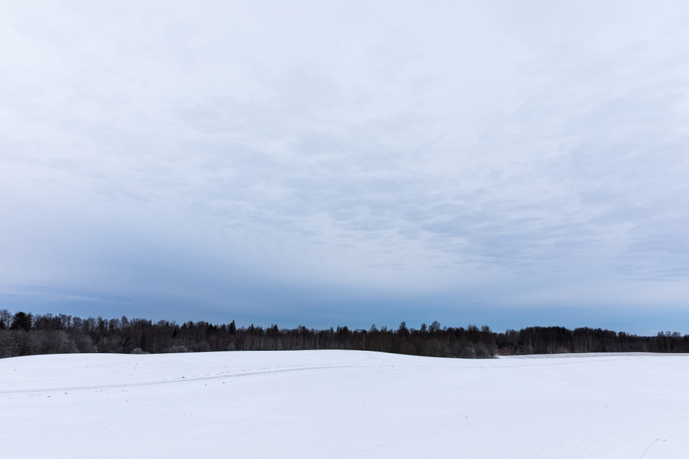 A winter landscape with blue sky, black forest, and white ground mimics the Estonian flag. Chilly winter winds from Russia bring extremely cold conditions.