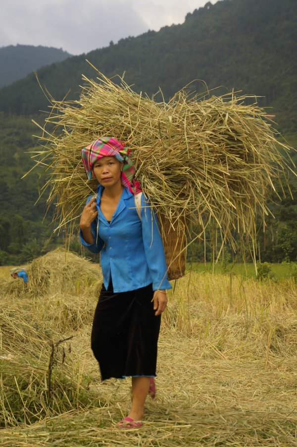 Opportunities for rural women are often limited to household agricultural production, handicraft-making, and seasonal labor.
