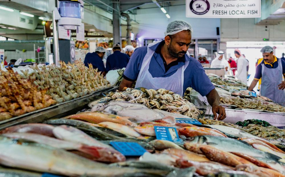 Abu Dhabi's fish market is north of Corniche Road.