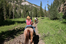 Horseback riding into the back country