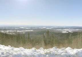 Yukon Intermontane Plateaus Tayga