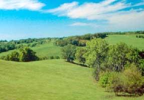 Prairie Parkland (Temperate)