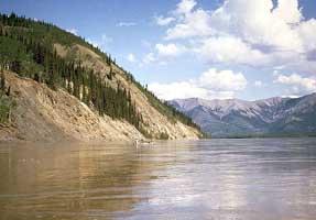 Yukon Intermontane Plateaus Tayga--Meadow