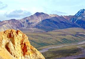 laska Range Humid Tayga-Tundra-Meadow