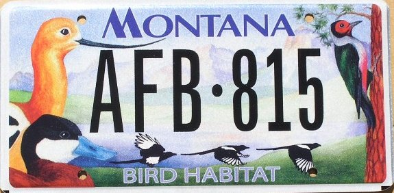 License Plate 9787