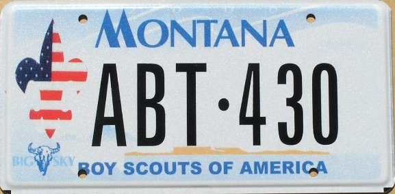 License Plate 9833