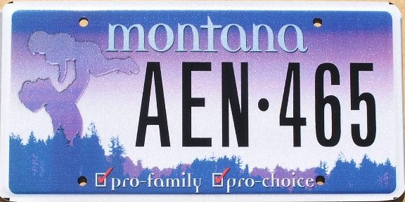 License Plate 10316