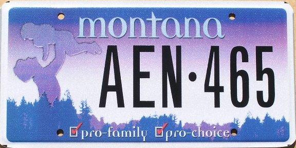License Plate 10316
