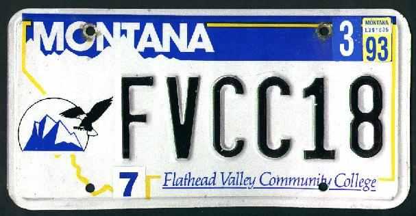 License Plate 9874