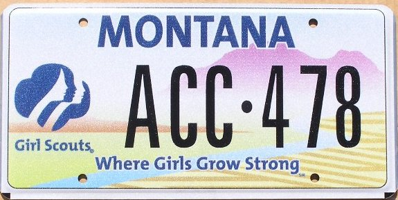 License Plate 10272