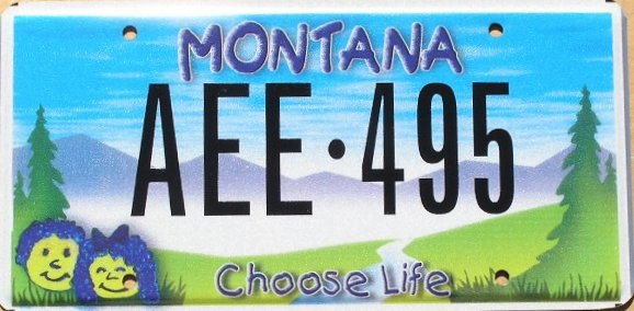 License Plate 9743