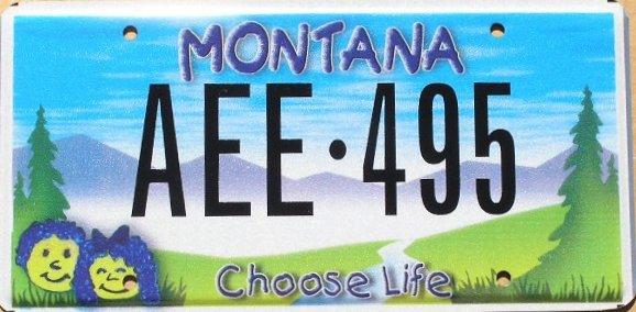 License Plate 9743