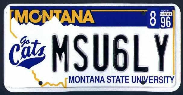 License Plate 10094