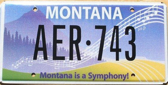 License Plate 10096
