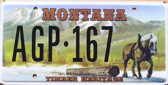 License Plate 10275