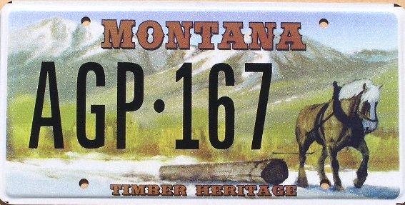 License Plate 10275