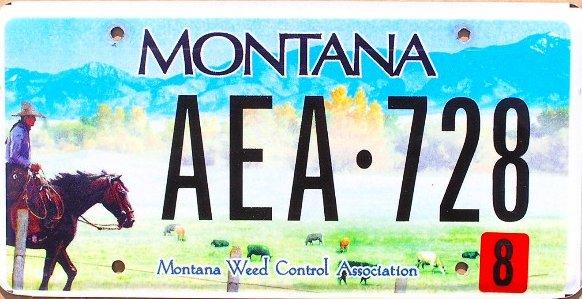 License Plate 10387