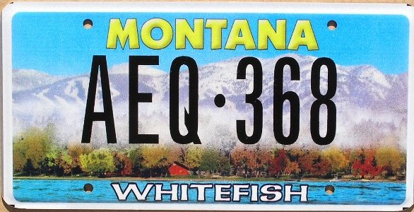 License Plate 9836