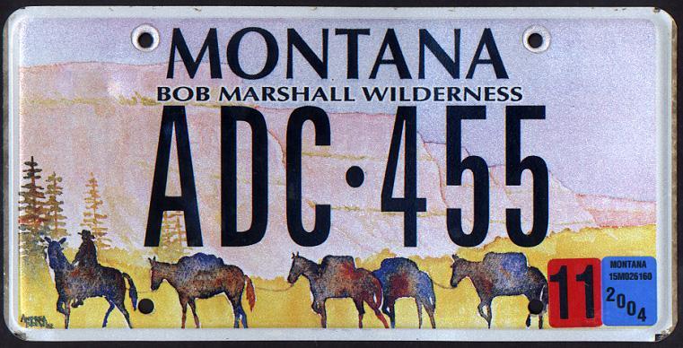 License Plate 1003