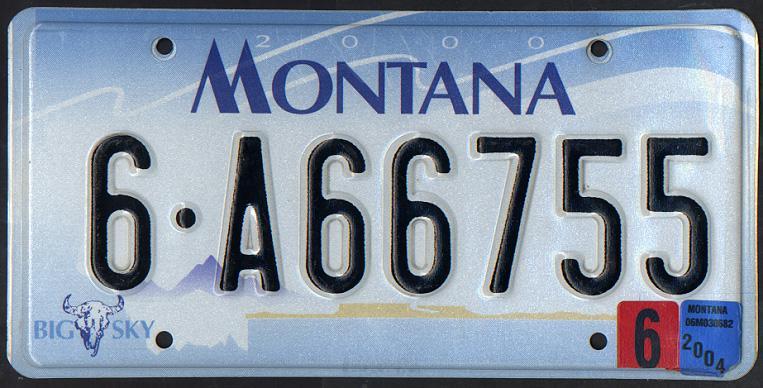 License Plate 1004