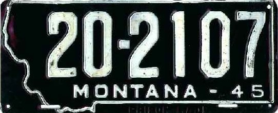 License Plate 18042