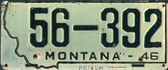 License Plate 17424