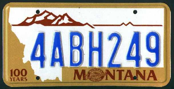 License Plate 2334