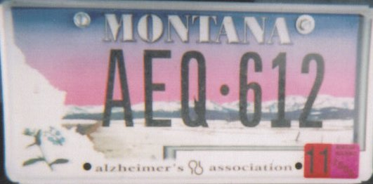 License Plate 9873