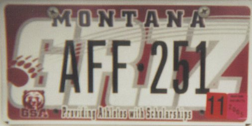 License Plate 9745