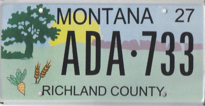 License Plate 10318