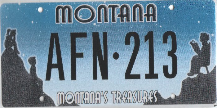 License Plate 10353