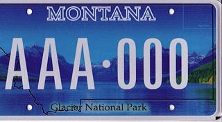 License Plate 10100