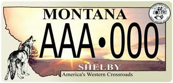 License Plate 10394