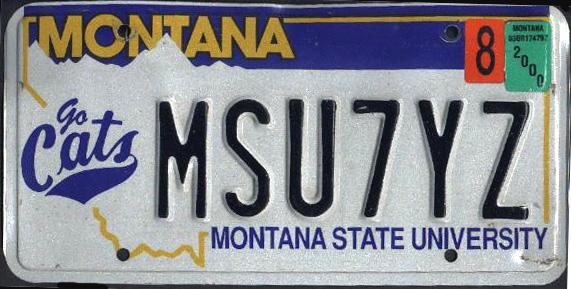 License Plate 9877