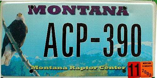 License Plate 10392