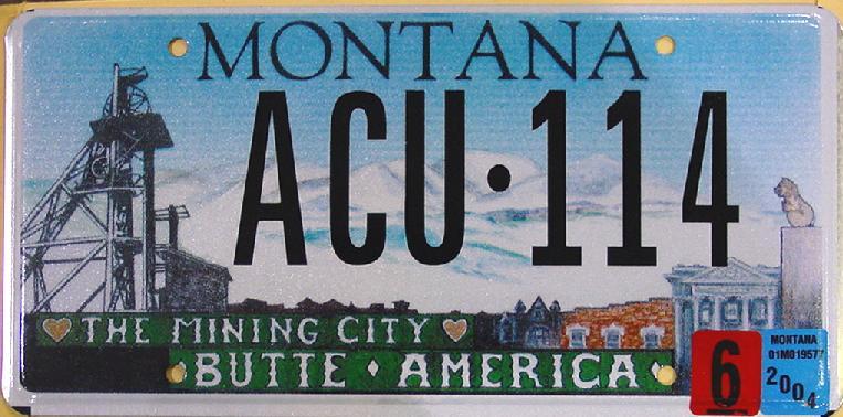 License Plate 10099