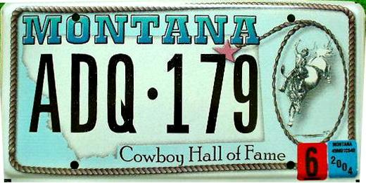 License Plate 9838