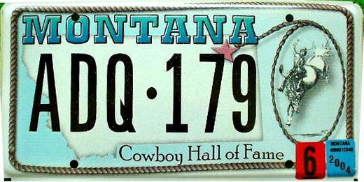 License Plate 9838