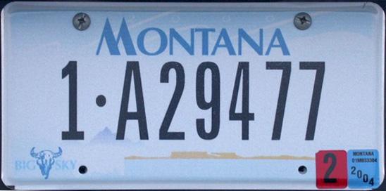 License Plate 1006