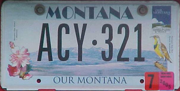 License Plate 10393
