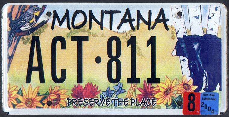 License Plate 9794
