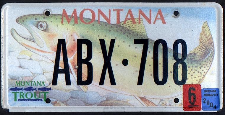 License Plate 10358